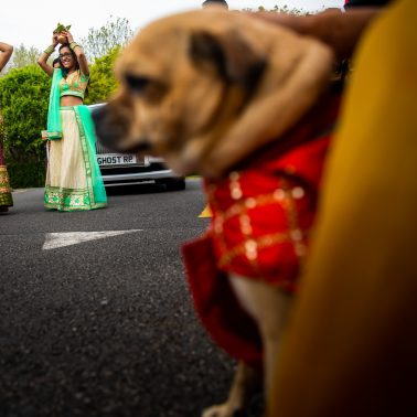 Asian wedding photographer in Hertfordshire